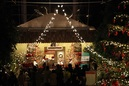 ジュニアオーケストラ浜松 フラワーパークナイトコンサート
